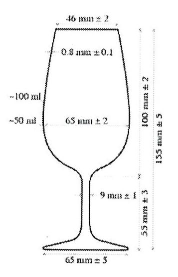 Il portale delle osterie for Bicchieri tulipano